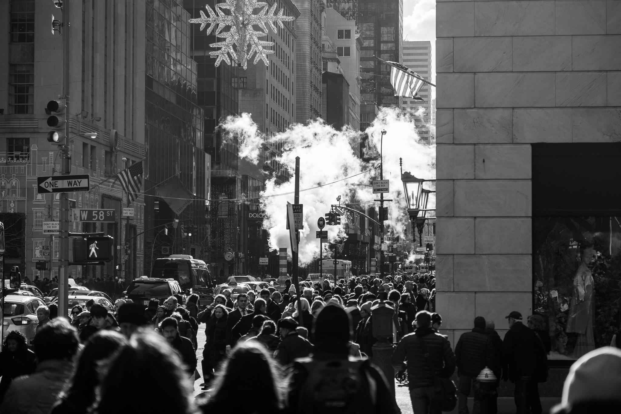 Frank Tasche-Black Friday @5th Ave